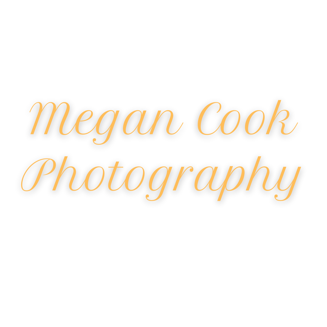Megan Cook Photography